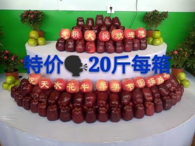 甘肃天水红蛇果 200-300克 70/65果经