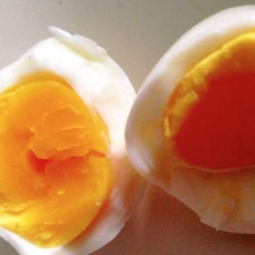 土鸡蛋  河南新乡  无抗420枚 蛋清稠 蛋黄大 口感好
