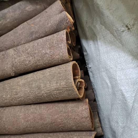 厚肉桂  桂皮中通大通黄通去皮大通和烟桂产地大量直销