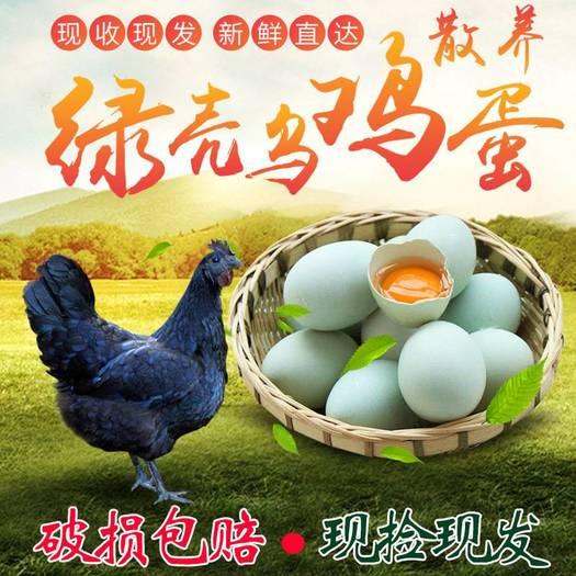 包邮正宗散养绿壳乌鸡蛋农家纯粮新鲜乌骨鸡蛋草鸡蛋初生柴土鸡蛋