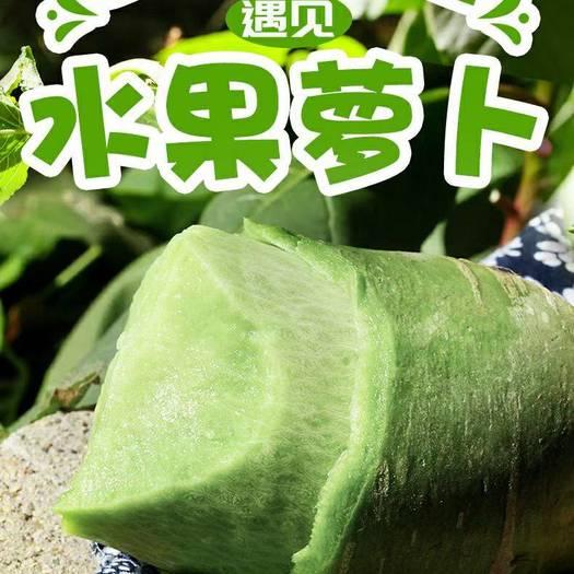 潍县青萝卜,实报实价,无代办费,提供各种精品包装