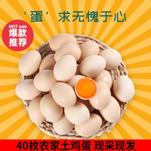 【顺丰包邮】正宗土鸡蛋散养农村新鲜草鸡蛋 笨鸡蛋批发