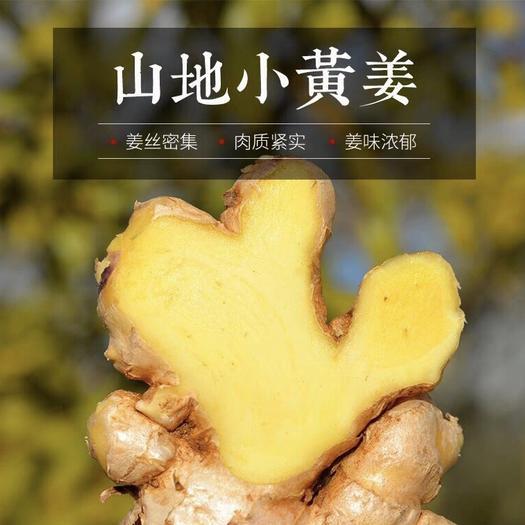 云南罗平山地小黄姜老姜 3/5/9斤现挖现发