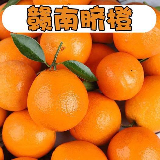 (破损包赔)赣南脐橙新鲜采摘10斤带箱 团购批发成箱包邮