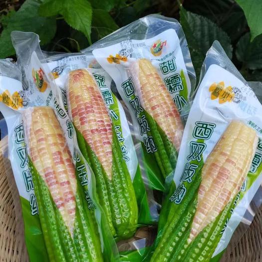 糯玉米  云南西双版纳甜糯小玉米熟玉米真空包装开袋即食产地直发孕妇可吃