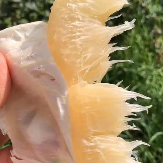 沙田柚  包装好包上车  上车价   一手货源  产地直供