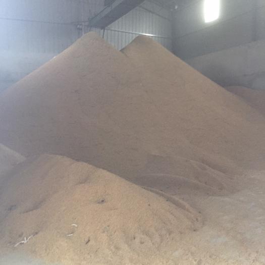 杂交稻  杂交水稻