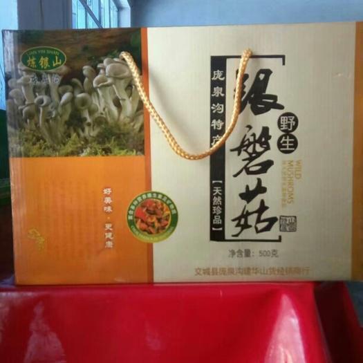 山西省吕梁市方山县干银盘蘑菇 散装 1年