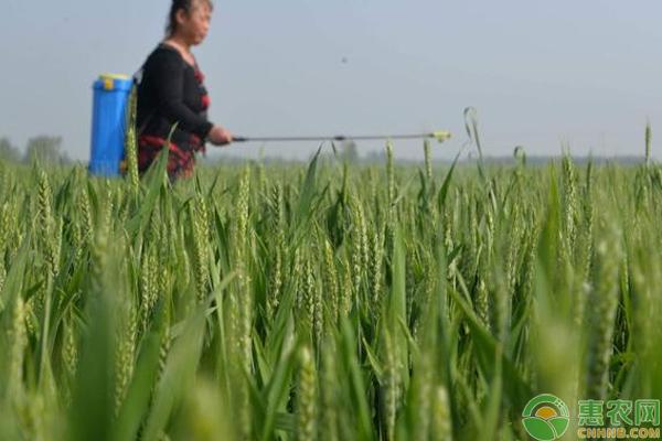 磷酸二氢钾对作物生长有什么好处?