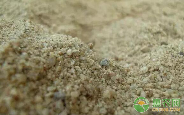 植保专家对于*壤科学施肥的知识介绍