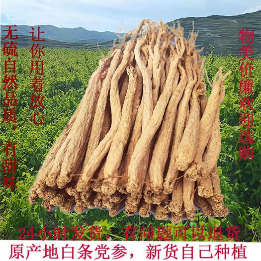 秦岭党参  产自千年药乡、地道药材、新货白条党参,自然晒干无硫。