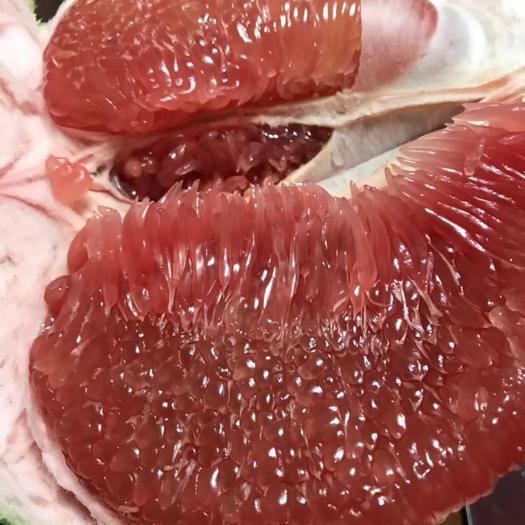 平和琯溪蜜柚  柚子  红心柚   (可以落地配) 价格便宜