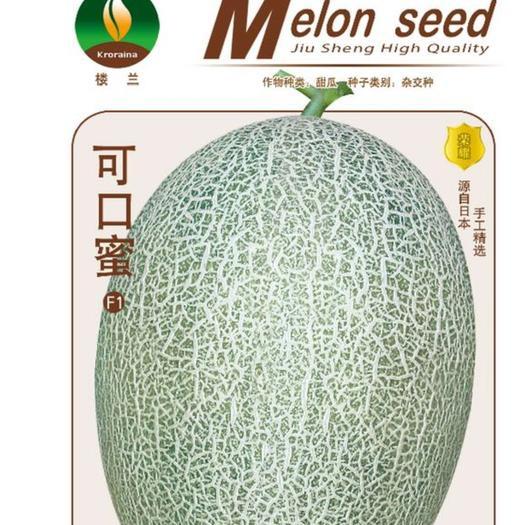新疆哈蜜瓜种子 楼兰~可口蜜6斤抗病抗裂甜度高商品性好产量高网纹好