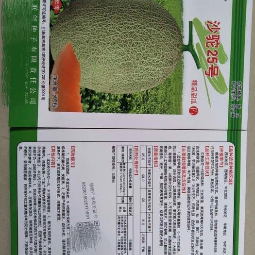 哈密瓜种子 沙驼25~晓蜜25