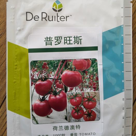 普罗旺斯西红柿种子——原包装