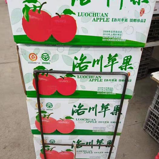 红富士苹果  【优选洛川苹果】有机冰糖心苹果二等果产地直供甜脆可口包邮