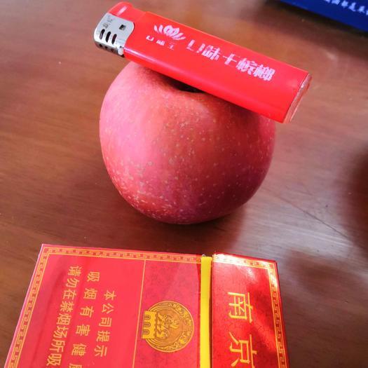 红富士苹果  70到80精品果