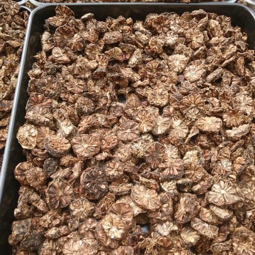 純天然新鮮諾麗果干片批發潔凈泡水直飲煲湯均可每箱十斤