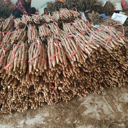 河南温县自家种植的垆土铁棍山药,自已吃最划算,无膨大剂,