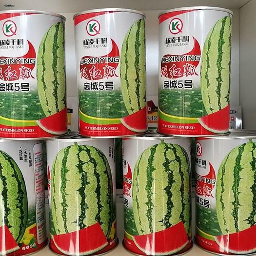 硒砂瓜西瓜种子  双红瓤金城5号早熟,双红瓤糖度14.高品质,高效益,火爆品种