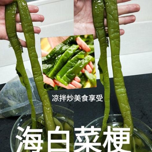 鹽漬海白菜梗海白菜梆日本人長壽的秘訣吃海洋中的食物5斤裝包郵