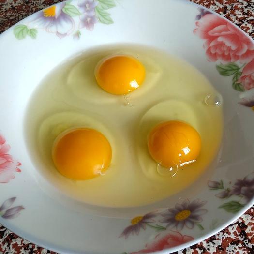 真正的土鸡蛋,不土不要钱