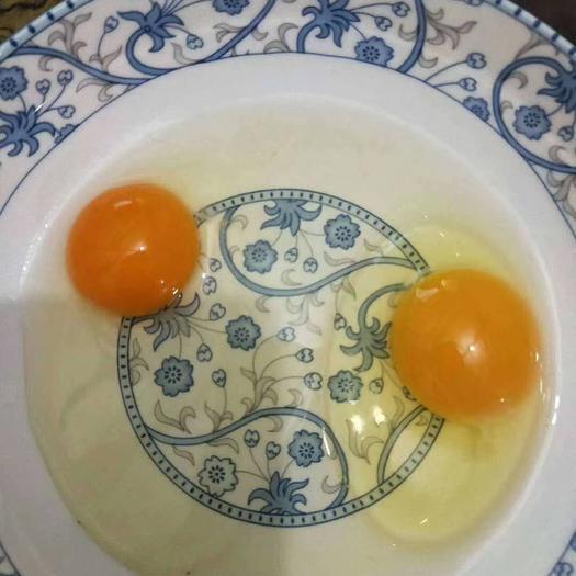土鸡蛋  正宗虫草蛋,玉米黄农二,农五,江汉土蛋,新华土蛋