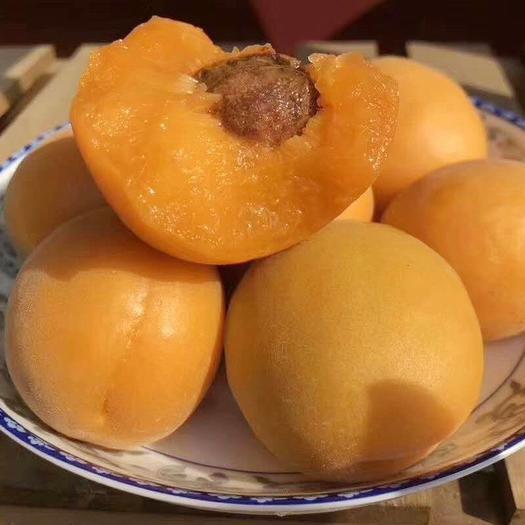 金太阳杏  【一件代发】2021新鲜杏子水果大黄杏农家孕妇酸甜