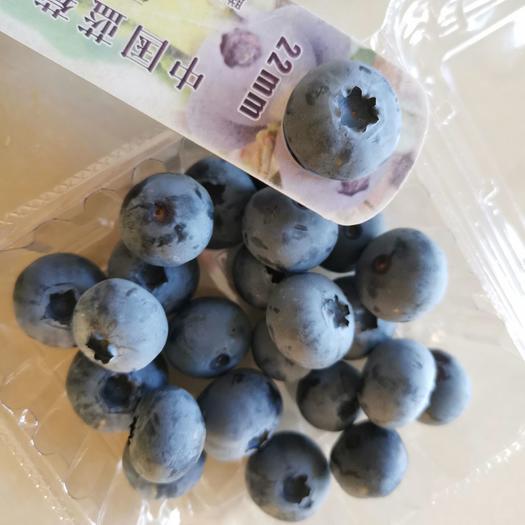 藍豐藍莓  遼寧特產有機北路藍莓三斤12盒綠色食品,果香濃郁品綠色食