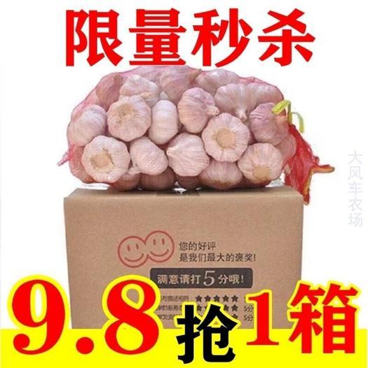 红皮蒜  2020年紫白皮大蒜农家自种当季新晒干大蒜净重5斤包邮