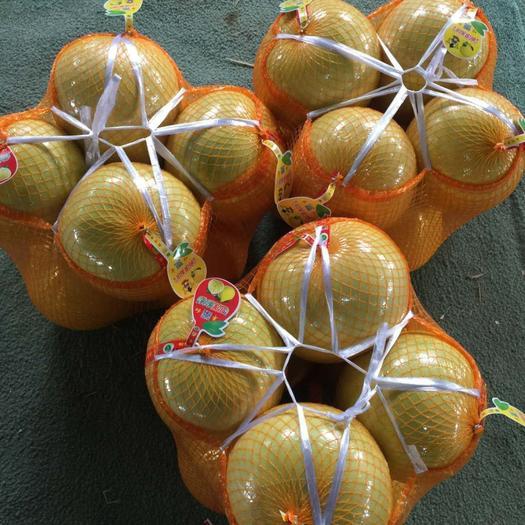 蜜柚上市,欢迎大家订货