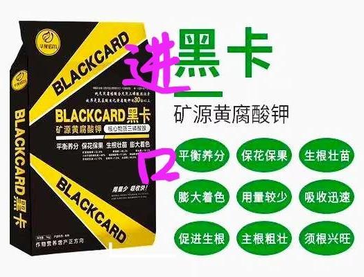 矿源黄腐酸钾⇔国际专用黑卡⇔核心物质三磷酸腺