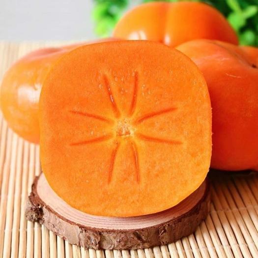 正宗甜柿柿子应季水果现摘现发香甜可口涩口包退整箱批发