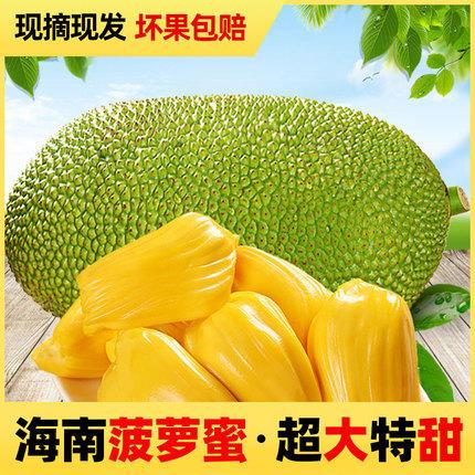 海南新鮮菠蘿蜜水果干包三亞菠蘿蜜15-35斤