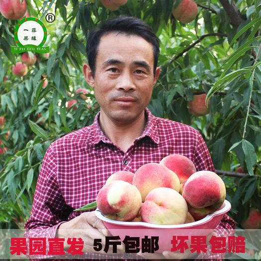 冬桃  现摘现发新鲜脆甜多汁5斤包邮红桃黄油桃!