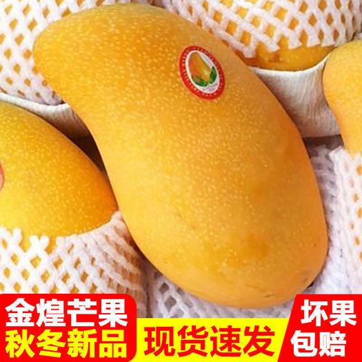 【现货现发 】正宗金煌芒果孕妇当季甜心热带新鲜水果批发包邮