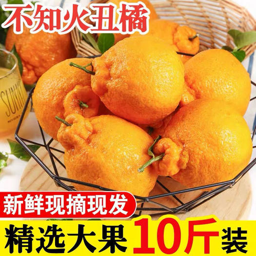 高原不知火丑橘新鲜粑粑柑应季水果 个大饱满 口感香甜