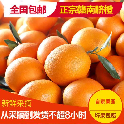 赣南现摘现发新鲜脐橙当季橙子水果 皮薄肉厚 鲜甜多汁
