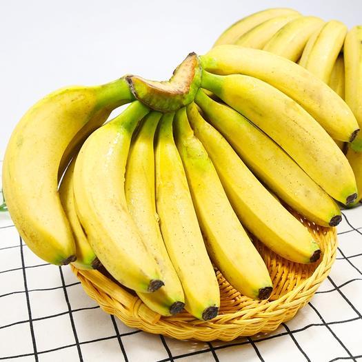 云南高山甜香蕉当季水果新鲜包邮整箱5斤10斤自然熟
