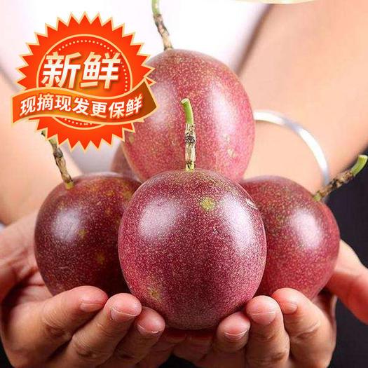 紫香一号百香果  【送开果器】百香果5斤现摘2斤批发五斤水果广西新鲜整箱云南包