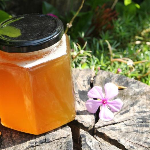 意蜂蜂蜜 2年以上 41 本品不能代替药物
