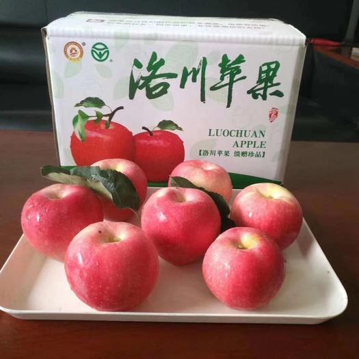 苹果  煊程果业24枚京东包邮