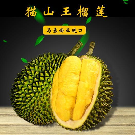猫山王榴莲  马来西亚以做核酸精品液氮锁鲜果肉带壳整果顺丰包邮常年有货批发