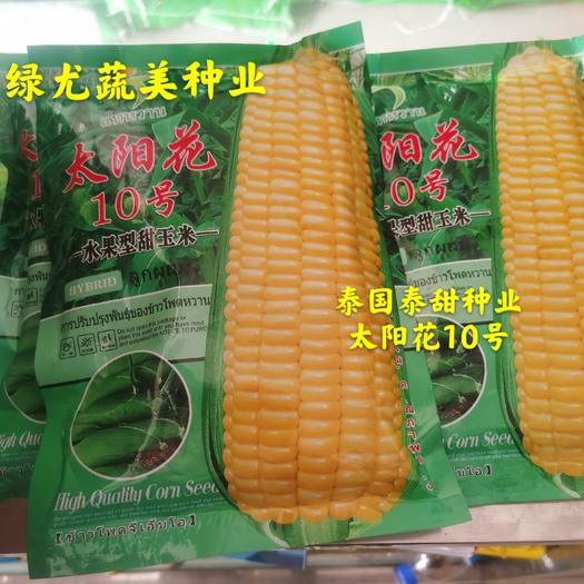 【主推】太阳花10号水果型甜玉米 泰国泰甜种业出品。