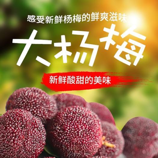 东魁杨梅  杨梅新鲜杨梅2021现摘杨梅应季水果现摘现发云南新鲜杨梅包邮
