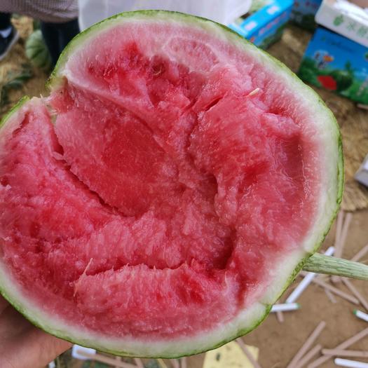 无籽西瓜  8424老百姓都喜欢吃的西瓜。