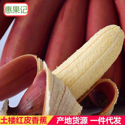 福建红蕉 美人蕉 红皮香蕉新鲜采现摘发货3斤5斤装新鲜生蕉