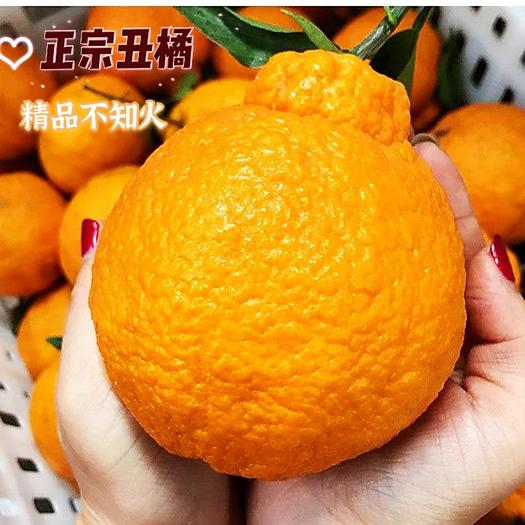 【正宗】四川不知火丑橘新鲜甜蜜多汁好吃不上火  坏果包赔
