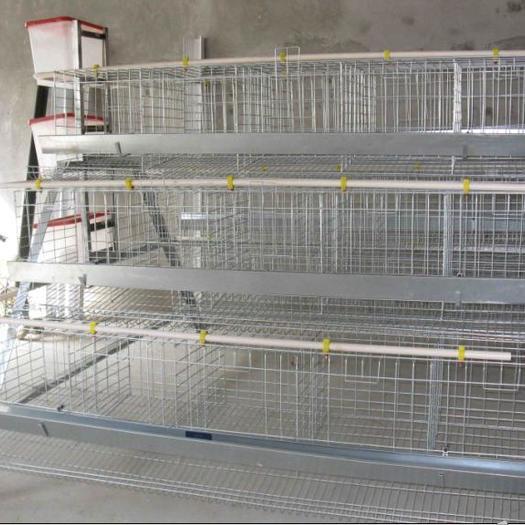 厂家直营阶梯式蛋鸡笼四门五门铁丝笼子养鸡铁丝网种鸡笼铁