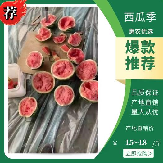 无籽西瓜  小薄皮,大红壤,